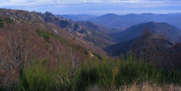 Monts de l'Espinouse - Hérault, le Languedoc © C. Marcouly